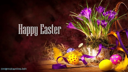 easter day sunday hd images