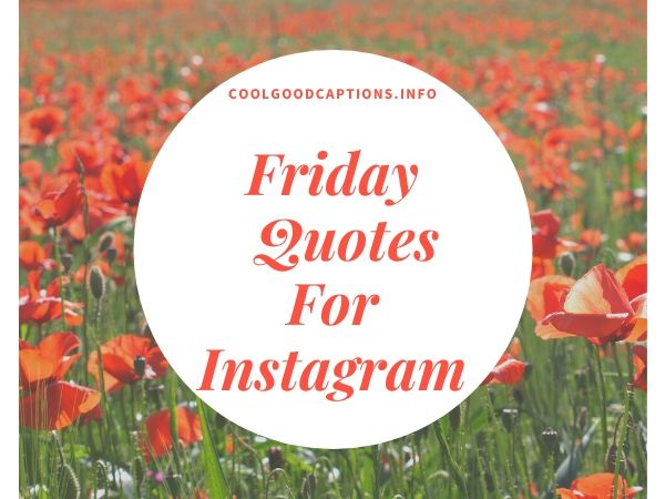 Friday Quotes For Instagram
